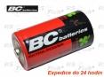 Batterie R20