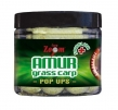 Boilies Carp Zoom Amurkarpfen POP - Up