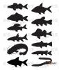 Aufklebern Fische - farbe schwarz