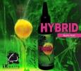 Attraktor LK Baits Hybrid Activ - Wild Strawberry