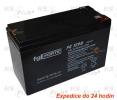 Batterie für Echolot FG 1290