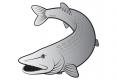 Aufkleber Delphin - Hecht Silber